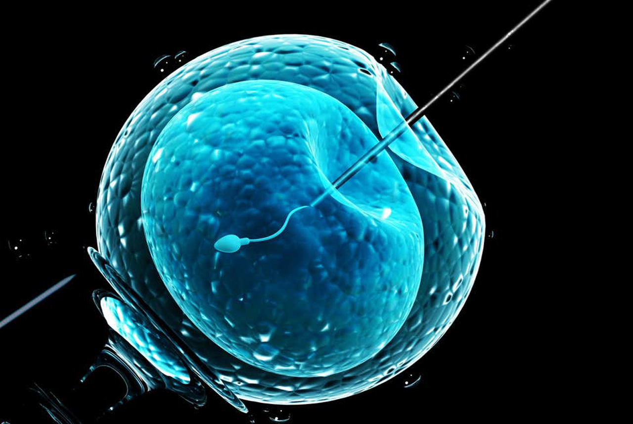 IVF Treatment Centre in india